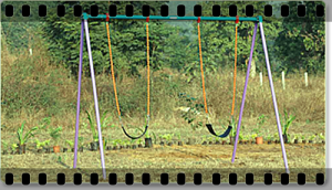 •	  FOUR SEATER ARC SWING SPECIFICATIONS:  PRODUCT CODE: PGSW 01 AGE GROUP: 4-14 YRS PRODUCT AREA: 6.1, X 1.5 MTS SAFE PLAY AREA: 7.5, X 2.5 MTS PRODUCT HEIGHT: 2.5 MTS •	  DOUBLE ARC SWING SPECIFICATIONS:  PRODUCT CODE: PGSW 02 AGE GROUP: 4-12 YRS. PRODUCT AREA: 3.5, X 1.5 MTS SAFE PLAY AREA: 4.2, X 2.5 MTS PRODUCT HEIGHT: 2.5 MTS •	  DOUBLE SWING SPECIFICATIONS:  PRODUCT CODE: PGSW 04 AGE GROUP: 4-14 YRS. PRODUCT AREA: 3.5, X 2.5 MTS SAFE PLAY AREA: 4.0, X 3.5 MTS PRODUCT HEIGHT: 2.5 MTS •	  SINGLE SWING SPECIFICATIONS:  PRODUCT CODE: PGSW 05 AGE GROUP: 4-12 YRS. PRODUCT AREA: 1.5, X 2.5 MTS SAFE PLAY AREA: 2.5, X 3.5 MTS PRODUCT HEIGHT: 2.5 MTS •	  DOUBLE POST SWING SPECIFICATIONS:  PRODUCT CODE: PGSW 09 AGE GROUP: 4-14 YRS. PRODUCT AREA: 3.5, X 1.0 MTS SAFE PLAY AREA: 4.5, X 2.0 MTS PRODUCT HEIGHT: 2.5 MTS